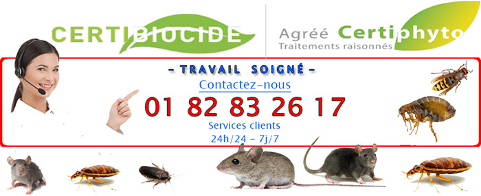 Nuisibles Orgeval